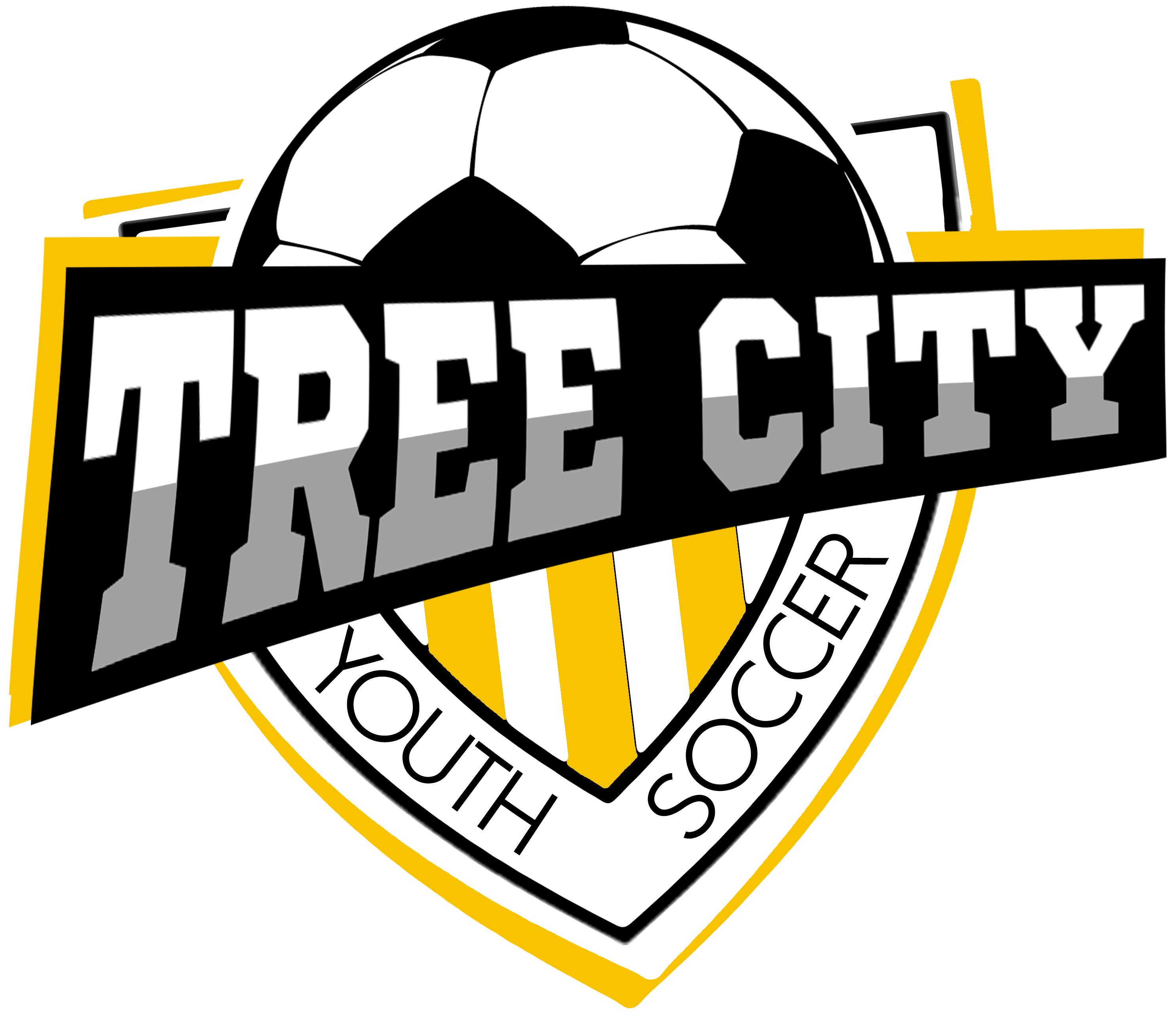 Tree City Youth Soccer Association